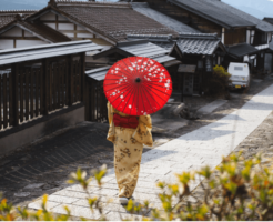 塩沢紬とはどんな着物?特徴や柄、コーディネート画像などを紹介!